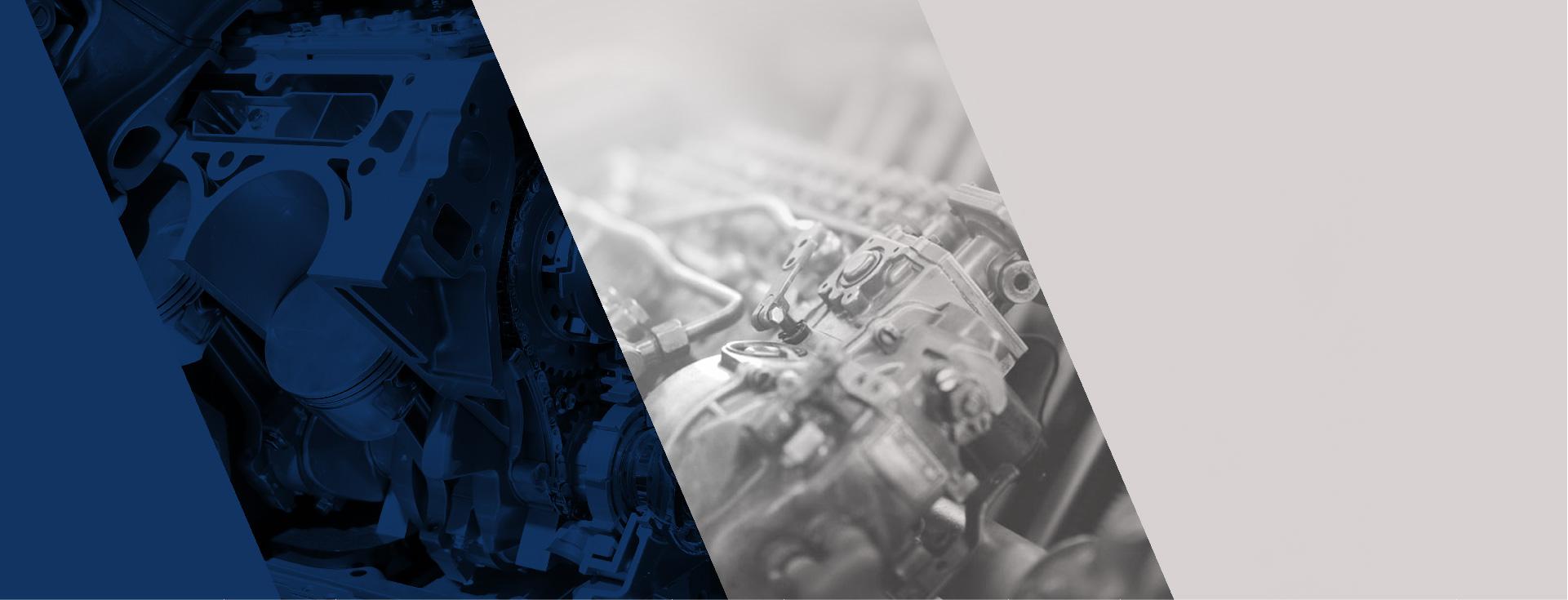 Motor Service Motori Industriali