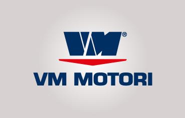 Ricambi motori VM